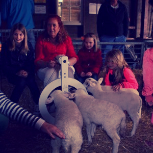 kittie_lambs1